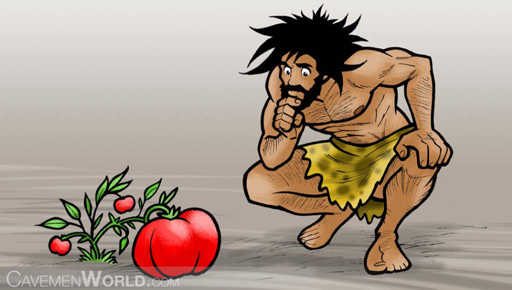 a caveman is looking with caution a genetically modified giant tomato